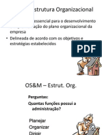 3 OS&M - Estrutura Organizacional.ppt