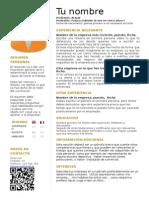Curriculum - 2013.doc