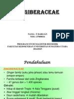 zingiberaceae-13_2
