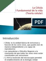 presentacinteoriacelular-091012072259-phpapp01