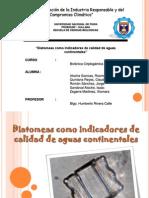diatomeas (1)