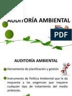 4. UNIDAD 2. Auditoría Ambiental
