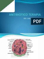 Nº6D - Antibioticoterapia (Dr. Navarro)