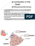 Electrical Conduction in the Heart