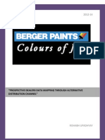 Berger Paints SIP Report
