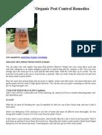 Extensive List of Organic Pest Control Remedies