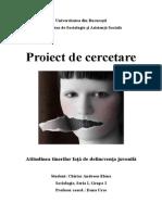 Proiect de Cercetare Mtcs