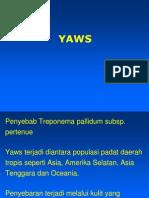 11a. Yaws