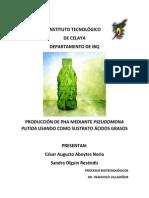 Producción de PHA - Entrega