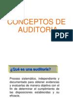 Auditoria Interna 19011