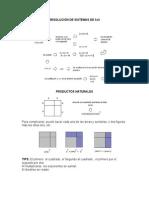 5) Resolucion de Sistemas 3x3, Productos Naturales