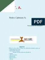 Pedro Cabezas N_T6
