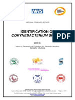 Identif. Sp. Corynebacterium