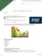 20 hilfreiche Gartentipps für den Sommer