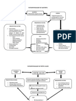 Pathophysiology of some GI disorders
