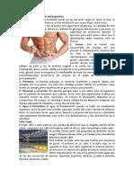 Alimentación y Nutrición Del Deportista