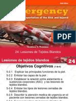 24 Lesion de Tejidos Blandos
