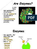 PROTEIN FUNCTION 4