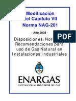 NAG_201_-_CAPITULO_VII modificación 2008.pdf