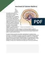 El Cerebro Emocional , Desarrollo Personal