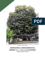 El Genero Ficus en Murcia