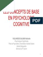 1 1 Viglianese PsychoCognitive