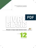 Livre Blanc Prevention 090112 HD