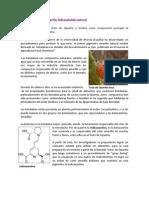 Extracto estable de Betalaínas.pdf