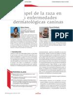 Raza en Dermatopatias