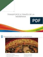 transporte membrana