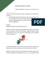 Enfermedades Diarreicas y Nutricion