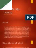 Diệt Mối Triệu Hoàng Uy Tín Tại Hcm