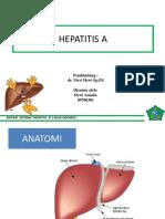 Ppt Hepatitis A
