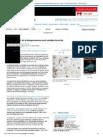 _Materia Oscura_ de La Biología Insinúa Cuarto Dominio de La Vida - La Vida - El 18 de Marzo de 2011 - New Scientist