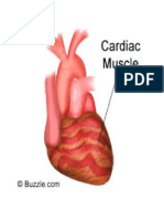 Cardiac,Smooth,Skeletal Muscle
