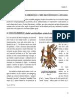 Pensamiento Cosmogónico Dual Prehispanico