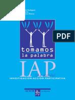 IAP de BOLSILLO Manuel Basagoiti Rodríguez