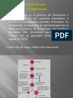 ovognesi-131012200129-phpapp02 (1)