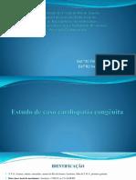 Estudo de Caso - Terça-Feira (1) (2)