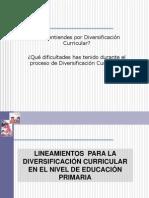 PROCESOS DIVERSIFICACION 2012