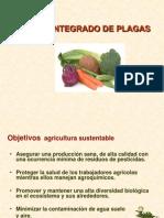 EstrategiasManejo Integrado de Plagas Class 6