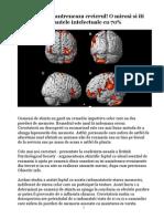 Planta Care Iti Antreneaza Creierul