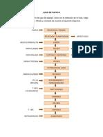 Proceso Papaya (1)