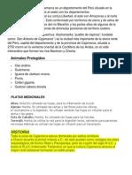 Departamento Cajamarca