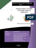 Informe de Biotecnologia Alfa Amilasa
