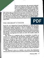 Shamans Vision