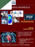 2.1.Sist Cardiovascular.pdf