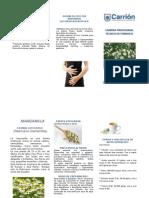 Triptico de Plantas Medicinales
