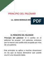 Principio Del Palomar Nuevo
