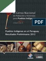 Pueblos Indígenas en El Paraguay. Resultados Preliminares - CNI 2012 Bc